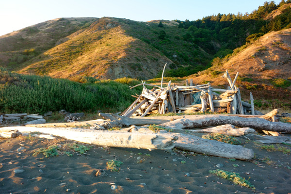 driftwood home