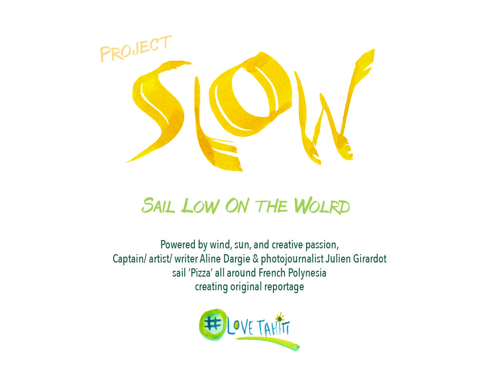 SLOW Presentation 2-2017